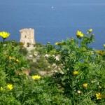 La Torre di Scopello